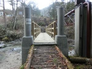 写真 南信土建 浪合悪瀬橋 吊り橋 (20)